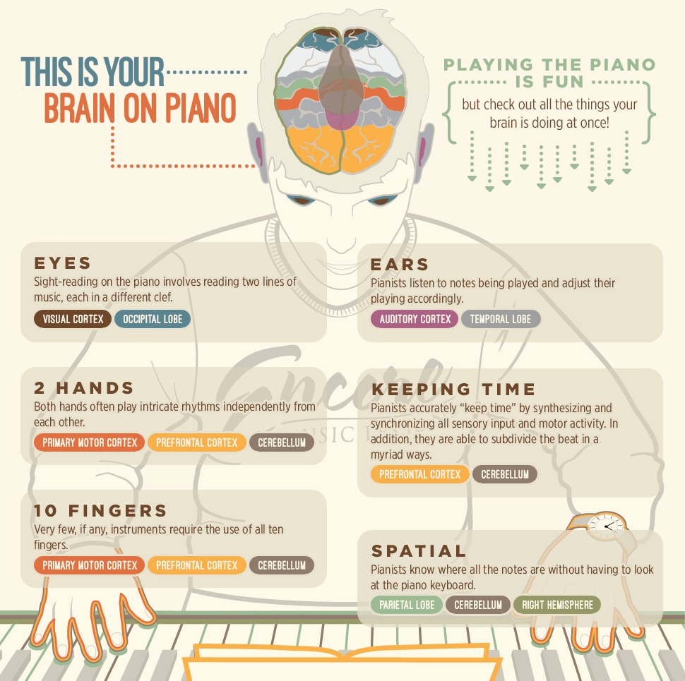 infographic-piano-lessons
